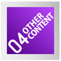04OTHER_CONTENT